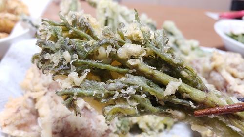 天ぷら 芽 タラ の