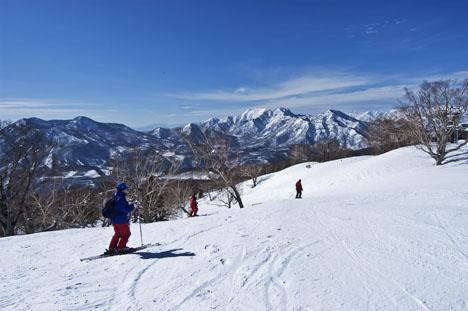スキー 杉 場 原 ノ
