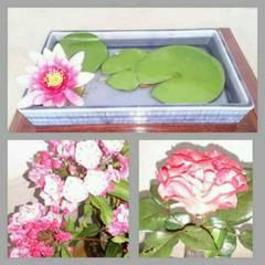 上郷小の正面玄関の花