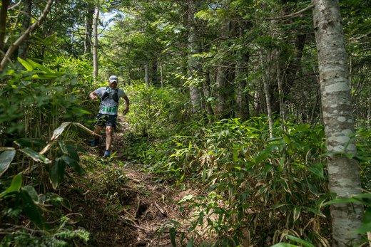 言い訳だらけの日常から、鉢盛山登山マラソンが、救ってくれた。。。