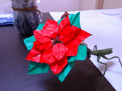 クリスマス 折り紙:ポインセチア 折り紙-marupee1013.naganoblog.jp