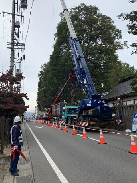 県道長野上田線千曲市八幡 交通規制をかけて武水別神社の枝切り工事を行なっております