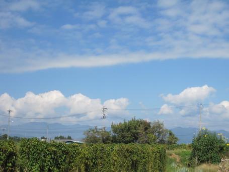 クロとデュエット:行き合いの雲