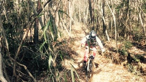ダウンヒル(DH)バイク