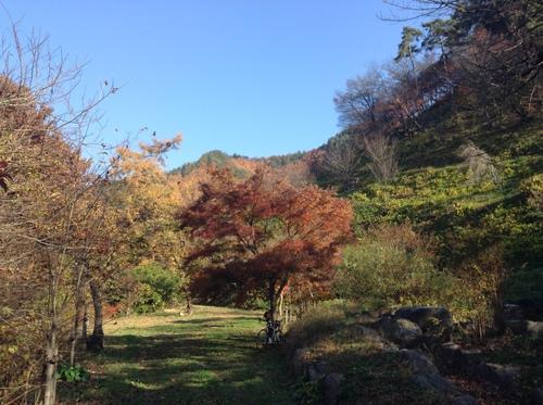 坂田山遊歩道